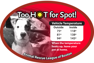 Too HOT for Spot!