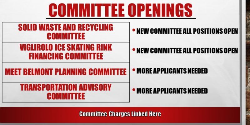 Committee Applicants Needed