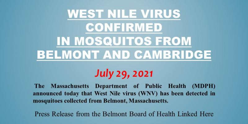 West Nile virus (WNV) has been detected in mosquitoes collected from Belmont, Massachusetts
